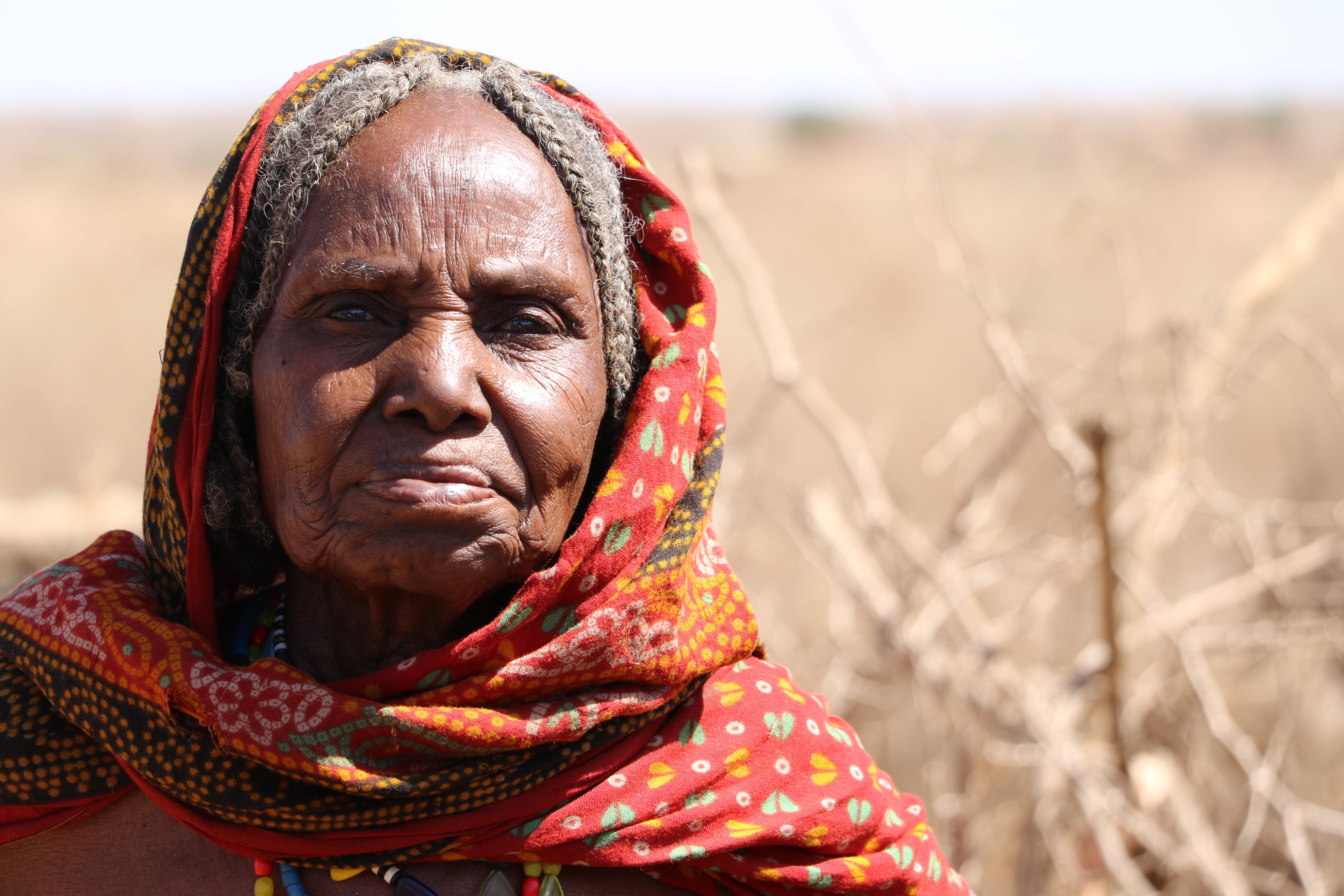 Miaka Hamsini ya Kiswahili Nchini Kenya