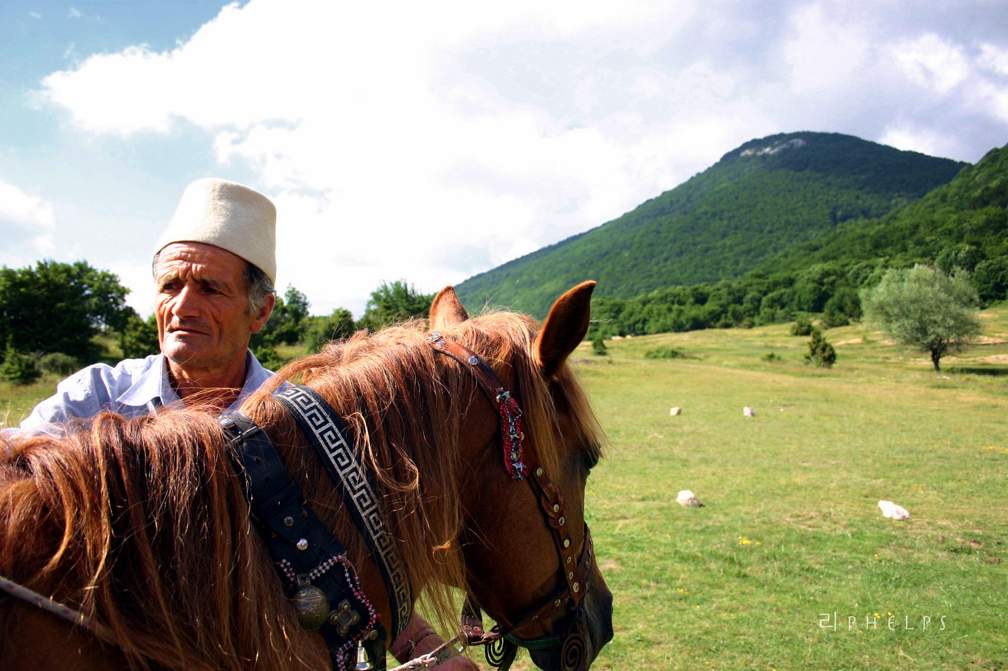 Forex albanian