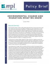 Download Policy Brief