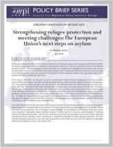 coverthumb Asylum Brief Strategic Guidelines
