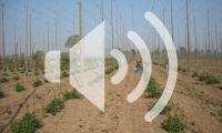 VISIT FLANDERS7642396646_1df9a19e03_c