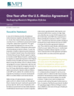 One Year after the U.S.-Mexico Agreement: Reshaping Mexico's Migration Policies