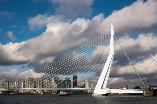 Rotterdam's Erasmus Bridge