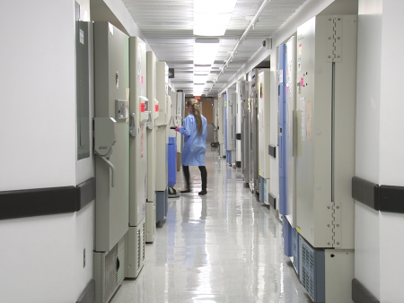HealthCare BrainWaste Commentary CDC
