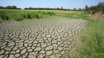 _climatechange lr